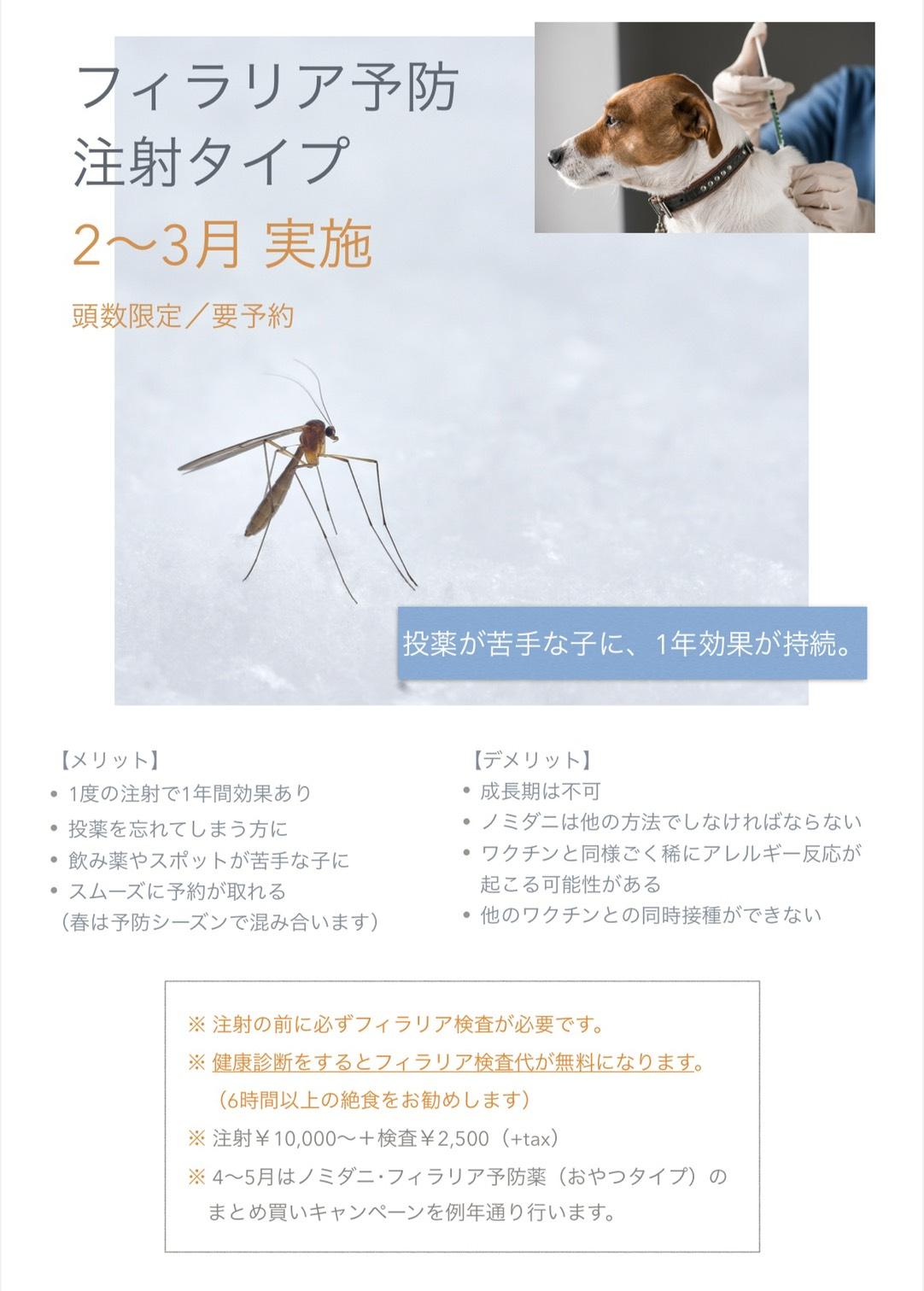 [2〜3月限定]フィラリア予防注射予約受付中